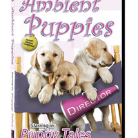 Ambient Puppies DVD: Puppy Tales