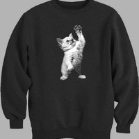 Kitten High Five Sweater for Mens Sweater and Womens Sweater ***