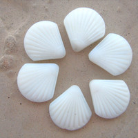 Clam shell beads grooved white sea glass 6 in bag