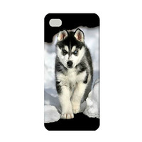 Siberian Husky Puppy TPU Case for iPhone 5/5s