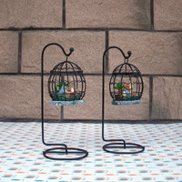 Baby Cats Cage Decoration Gifts Home Decor [6282396806]