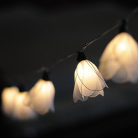 20 beautiful white Tulip flower string light patio hanging wedding living room bedroom party display home decor