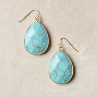 Gold Rung Earrings by Anthropologie