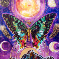Spirit Butterfly Moon Phases Owl feather Love