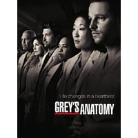 Greys Anatomy Poster 11x17 Mini Poster