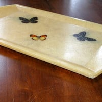 Set of Four Fiberglass Trays with Butterfly Design