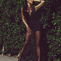 Ivy Sheer Lace Dress