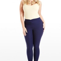 Plus Size The Perfect Pair Skinny Stretch Pants | Fashion To Figure
