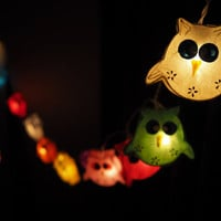 SALE Super Cute Colorful Owl Fairy String Light - 20 owl Lights Fairy lights Party Decor Wedding Garden Spa and Holiday Lighting