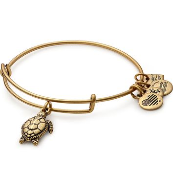 Sea Turtle Charm Bangle | Project Common Bond