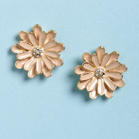 Good Old Daisies Blush and Gold Flower Earrings