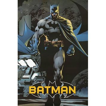 Batman Caped Crusader DC Comics Poster 24x36