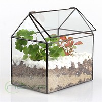 Bonsai House shape Glass Geometric Terrarium Tabletop Plant Box Planter Flower Pot Succulent Fern Moss Bonsai Flower Pot
