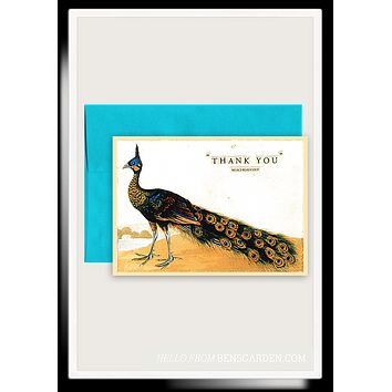 Thank You Peacock Folded Greeting Card