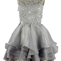 Charmingbridal Sleevelsss Ball Gown Ruch Lace Organza Gray Prom Dress