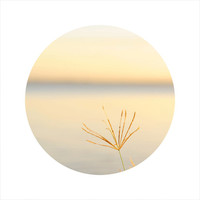LIMITED EDITION Circle Photo, Sunset Photography, Landscape Photography, Ocean Photography, Sea, Grass, Open Edition 8 x 8 Square Photo