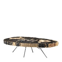 Petrified Wood Coffee Table | Eichholtz Barrymore