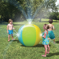 Kids Outdoor Inflatable Water Ball Activity