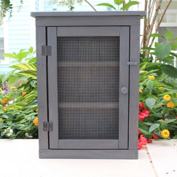 Rustic wood cabinet display with chicken wire door, treated with weathered grey stain