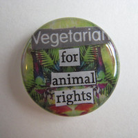 "Handmade Pin or Magnet - Color Photography and Upcycled Magazines - Resin Art - ""Vegetarian for Animal Rights"""