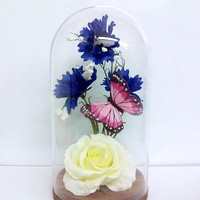 New * fairytale rose/Real rose/Beauty and the beast rose/disney/glass and rose/bottle/glass dome/Belle rose/glass dome/rose in a jar/unique