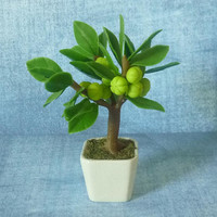 "Star gooseberry tree pot 4 1/4"" fruit tree pot/ Fake fruit/ Faux fruit/ miniature plants/ Dollhouse fruit plants/ Miniatures"