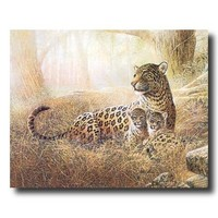 Tropical Leopard Cat Family Animal Wildlife Wall Picture 16x20 Art Print
