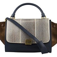 CELINE Multi-Color Trapeze Leather & Suede Shoulder Handbag
