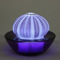 SeaThingz Flameless Candles - Real Sea Urchin Night Light - LED Battery Operated Tealight for Elegant Coastal Home Decor