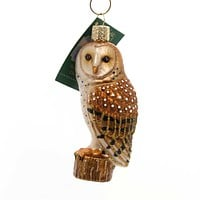 Old World Christmas BARN OWL Glass Bird Or Prey Ornament 16118