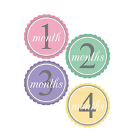 Baby monthly stickers- monthly stickers, milestone stickers, baby belly stickers, babys first stickers, polka dot stickers, shower gift