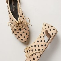 Prep-Dot Oxfords by Matisse Neutral 8.5 Oxfords
