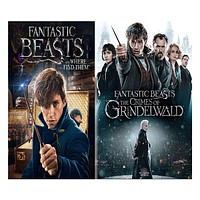 Fantastic Beasts 1 & 2 Movies DVD Set