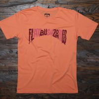FLATBUSH ZOMBIES - MADE IN USA T-SHIRT - MERCH – The Glorious Dead