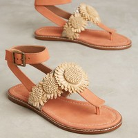 Bettye by Bettye Muller Fae Sandals