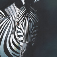 Zebra Painting - Print of acrylic painting 2014 - A4 print