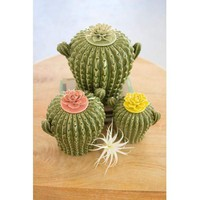 Set Of 3 Cactus Canisters With Flower Tops