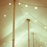 Circus tent photograph - Carnival photography  - string of lights cream beige neutral decor architecture art wedding celebration 8x10 print