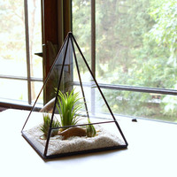 Terrarium, Glass Pyramid Planter with Air Plant, DIY