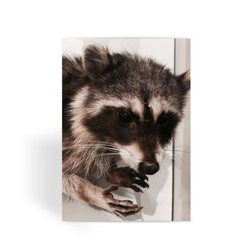 Taxidermy Raccoon Greeting Card