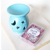 Berry Fizz Soy Wax Tarts - Set