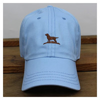 Over Under Hill Top Hat-Sky Blue with Chocolate Labrador
