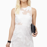 Mesh With It Dress