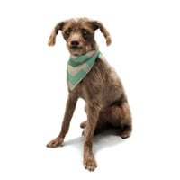 "Catherine McDonald ""Malibu"" Pet Bandana"