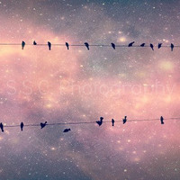 "Starry Sky Photo. ""Night Song"". 8.5x11inch Photo. Birds. Birds on Wire. Stars. night. sky. Dreamy. pink. purple. stardust. whimsical. girly"