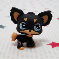 Lovely Pet shop animal LPS action figure doll Brown Black Chihuahua Puppy Dog #1571