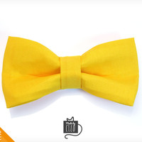 """Pet Bow Tie - """"Treasure Hunter"""" - Yellow Detachable Bowtie for Cats + Dogs"""
