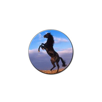 Mustang Horses - Animal Love Lapel Hat Pin Tie Tack Small Round