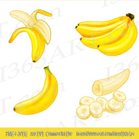 Banana Fruit Bunch Clipart, Hand Drawn Illustration Instant Download 300 DPI