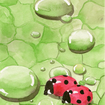 Original watercolor abstract illustration painting red ladybugs on the green leaf water drops